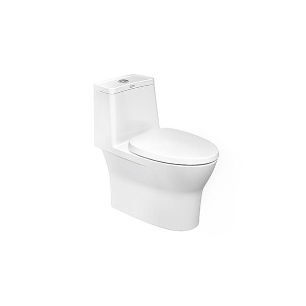 flexico one-piece toilet