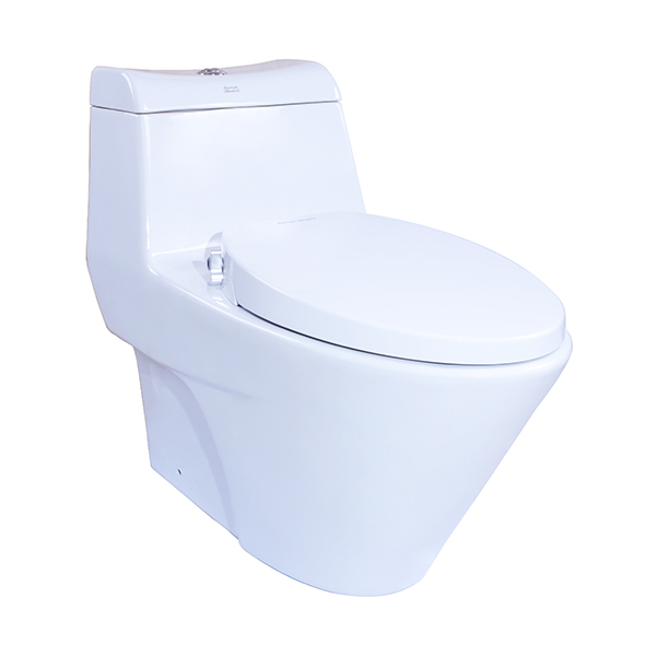 activa one-piece toilet with Razor Smart Washer