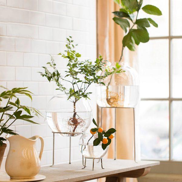 Rak untuk bunga indoor plant
