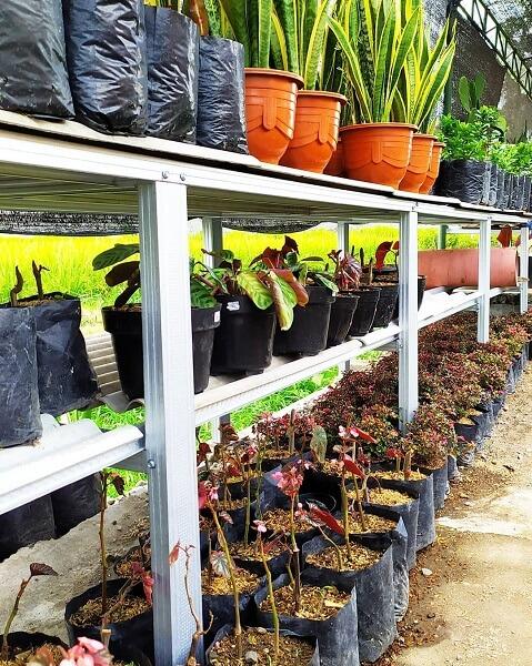 gambar 10 wadah tanaman baja ringan
